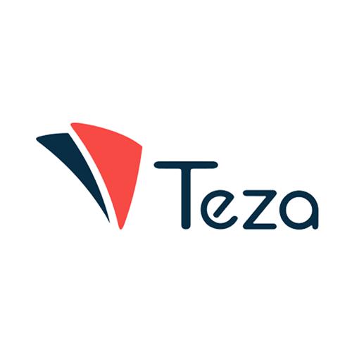 Теза лого